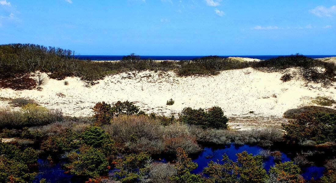 bright blue sky relfecting off of water over dunes with vegetation all around